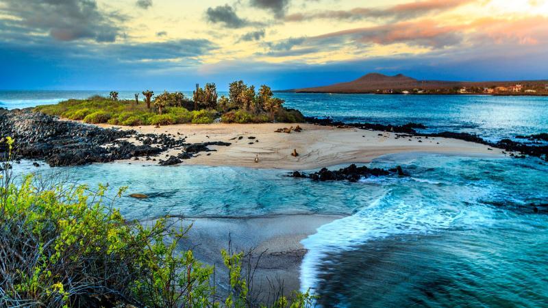 احجز مكان اقامتك في جزيرة غالاباغوس بأفضل الأسعار